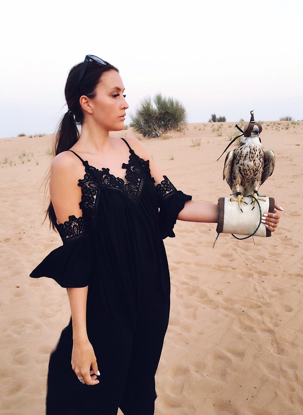 Falcon Show Platinum Heritage Dubai Falkenshow